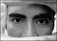 la mirada objetiva